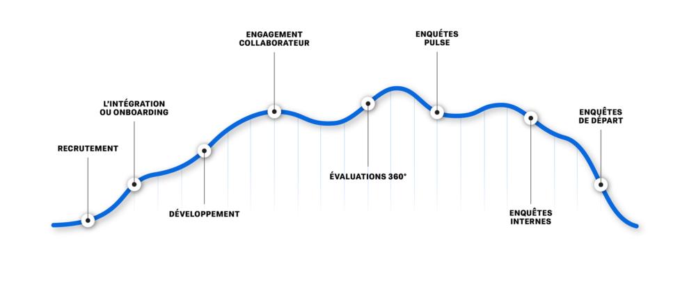 Le cycle de vie professionnel