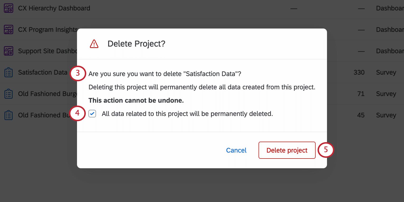 Delete Project window
