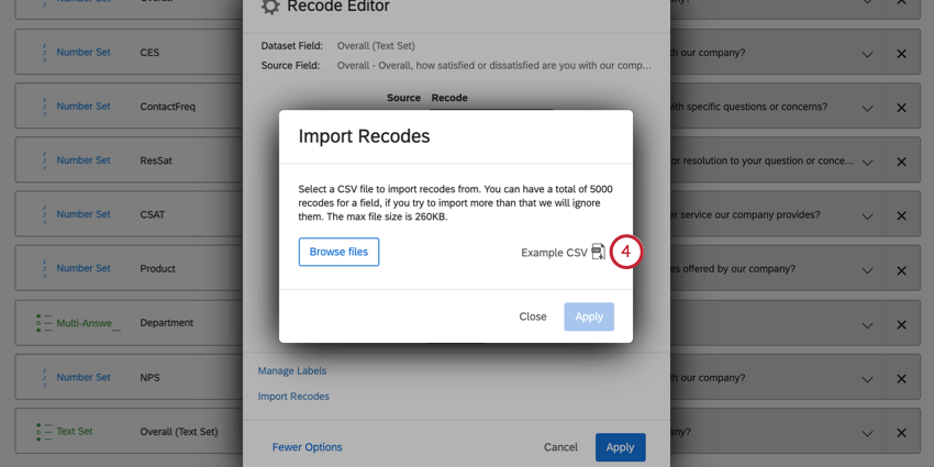 """image of the """"Example CSV"""" button in the recode editor"""