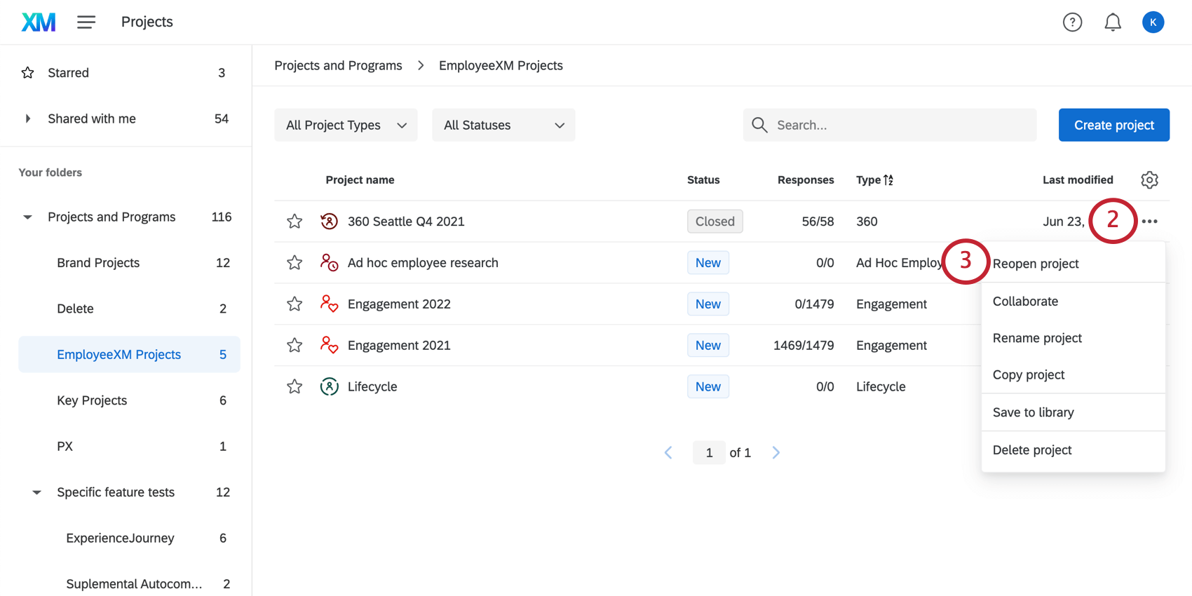 Using the dropdown menu next to the project to Reopen the project