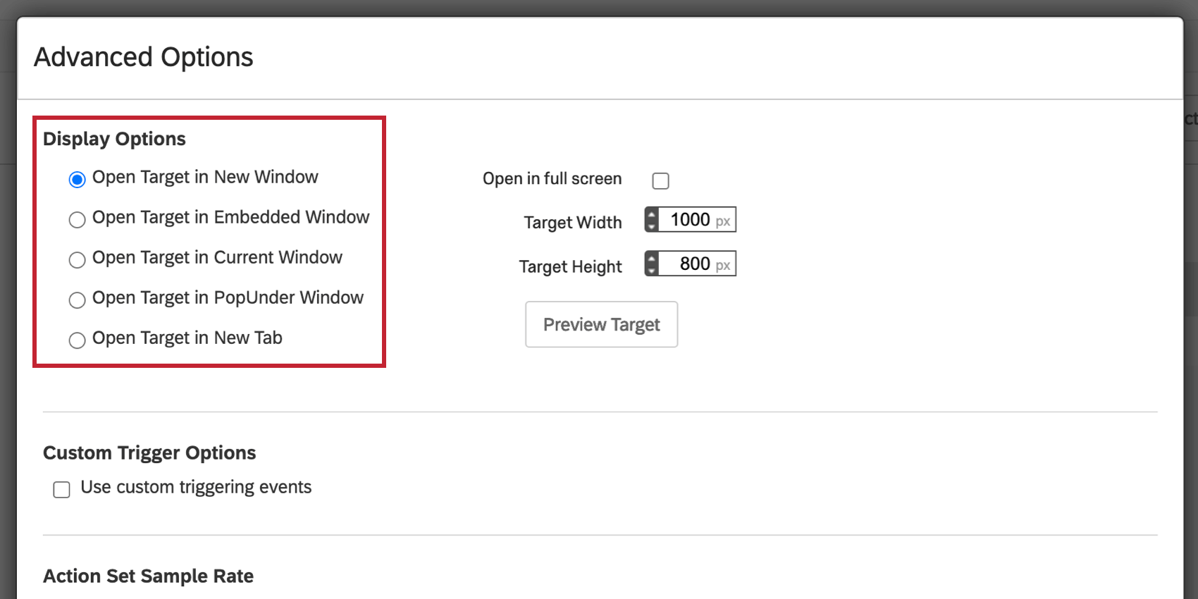 image of the open target in new window selection for display options.