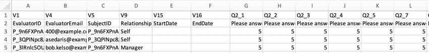 A much shorter file - no extraneous name columns, no scoring information, no rows for participants who already had data