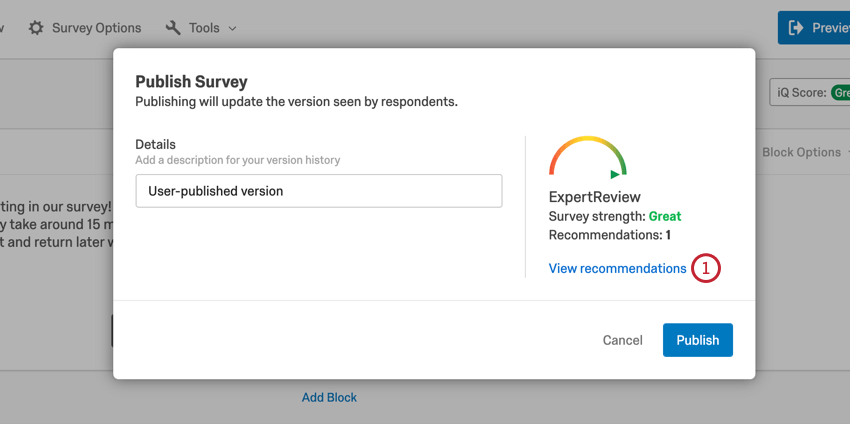 image of the expert review module when publishing a survey for the first time