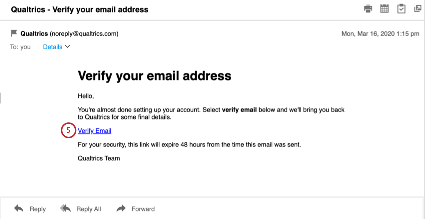 Screenshot of an email - verify email in center of message
