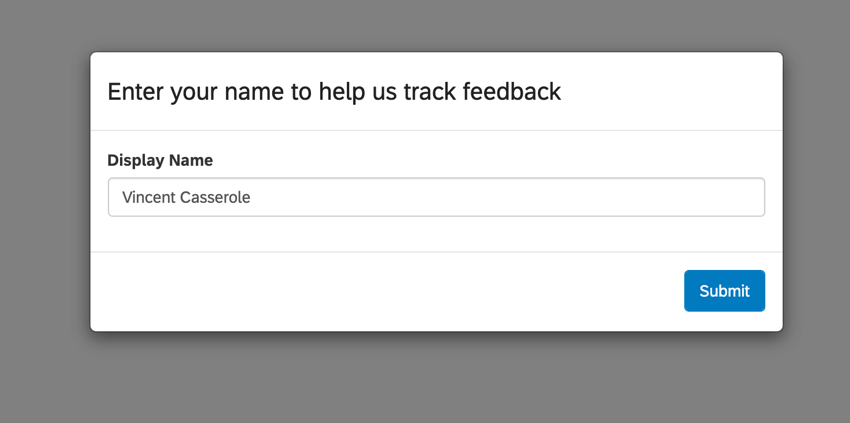 image of the display name pop up that appears for users the first time they enter a frontline feedback project