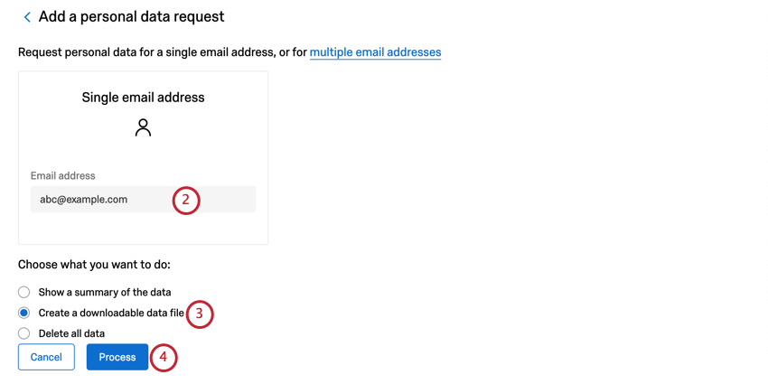 Large box where you can type one email address. Below that, multiple choice, first option is to show a summary. Then two buttons. Blue Process button is the second