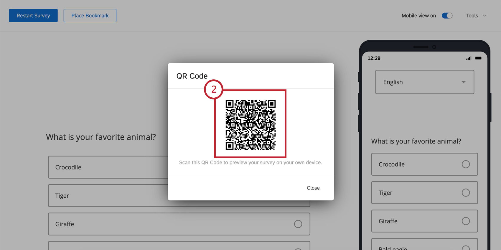 QR Code window overlay on the Preview page