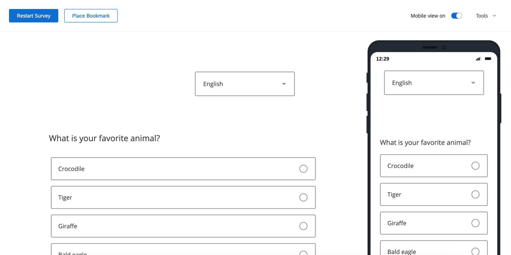 The Preview Survey page