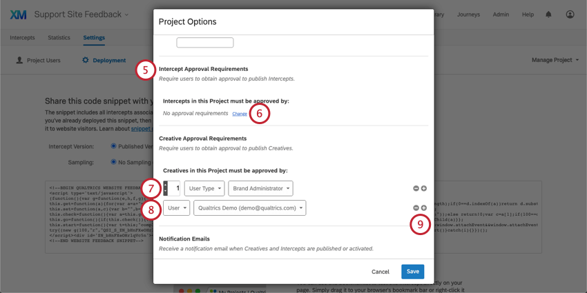 Intercept Approval Requirements and Creative Approval Requirements section of Project Options window