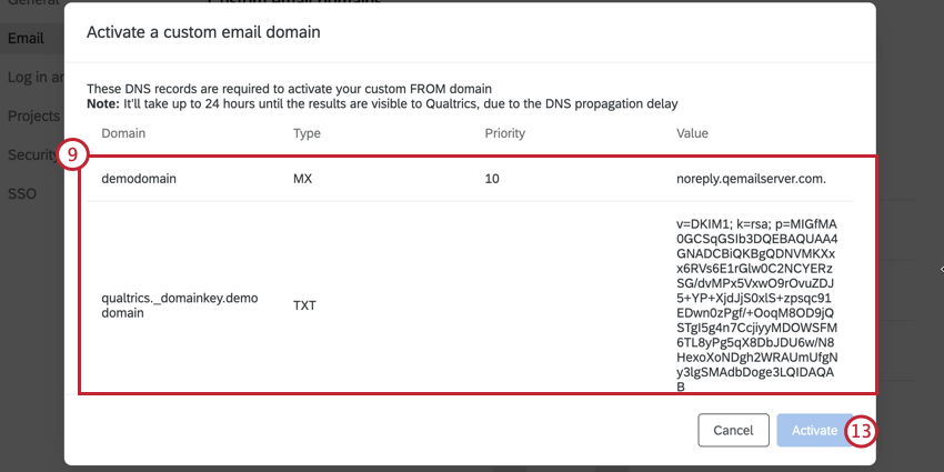 copying the DNS record information