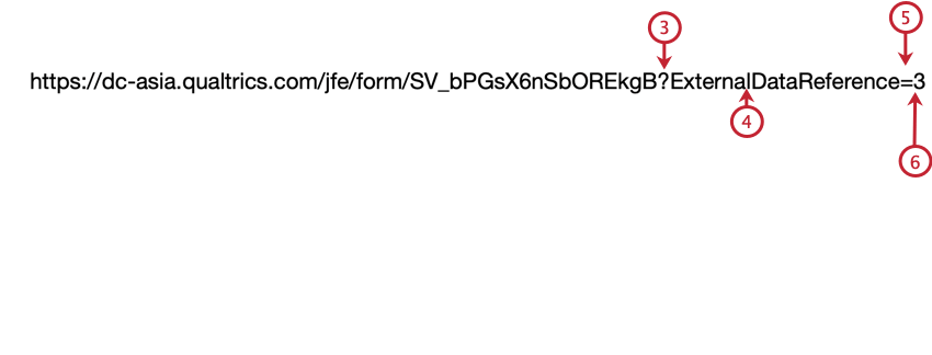 building a query string on the anonymous link to pass externaldatareference