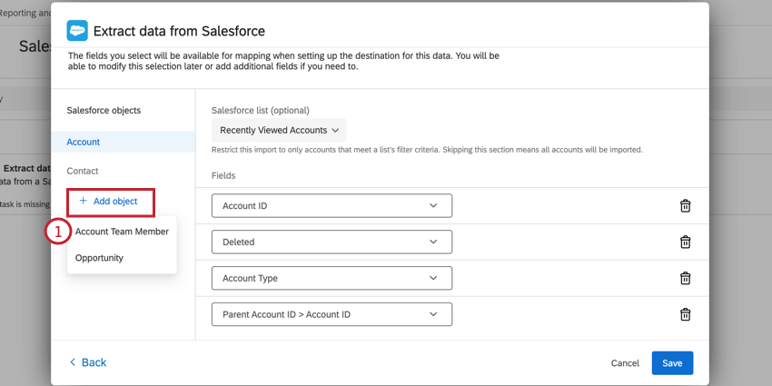 clicking add object and selecting account team member