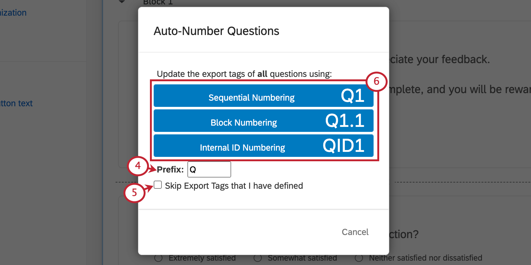 Auto-Number Questions window with options listed in blue in the middle