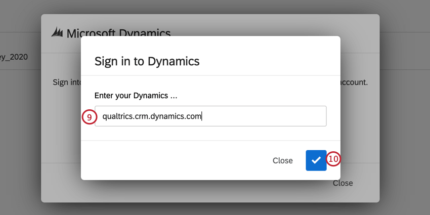 entering the dynamics domain and clicking the check mark