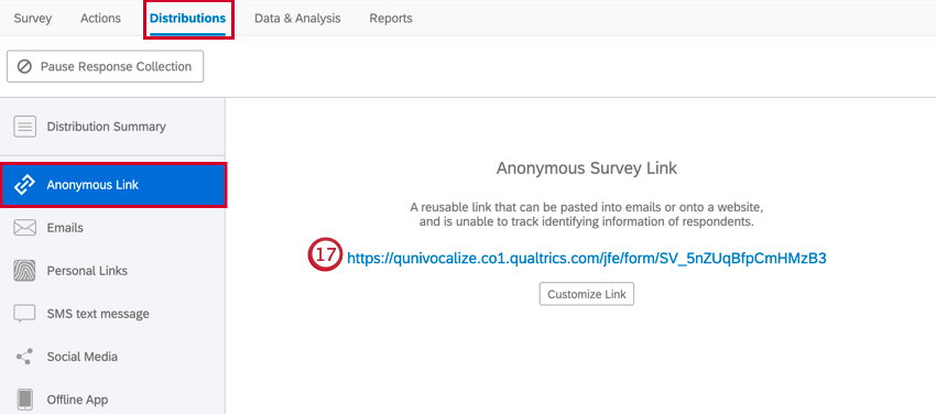 copying the anonymous link