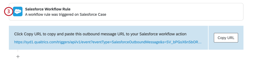 navigating to actions and clicking the salesforce workflow rule