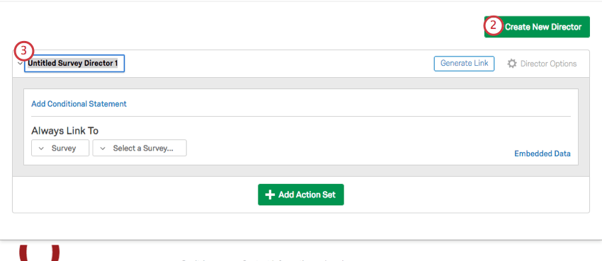 Create New Director button in top-right corner of Survey Director page