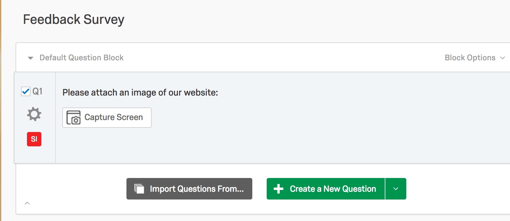 A question that says Please attach an image of our website with a Capture Screen button