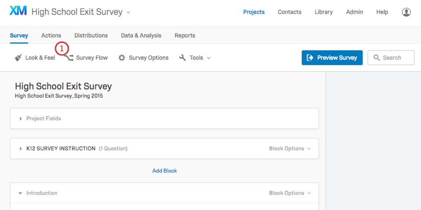Survey Flow button in the upper-left of the Survey tab