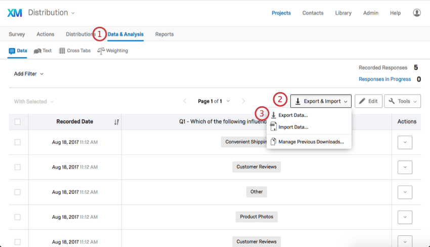 In the Data & Analysis tab, Export & Import is selected, then Export Data is highlighted