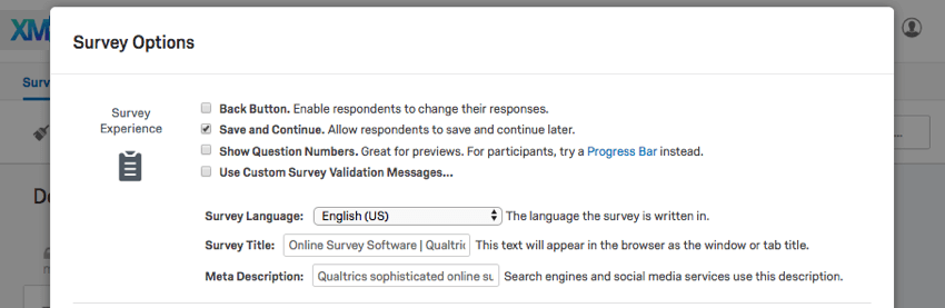 Survey Experience, the topmost section