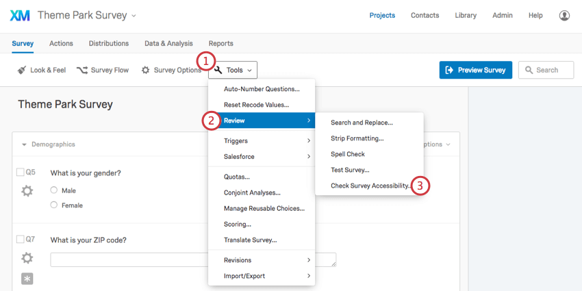 Check Survey Accessibility under Review under Tools