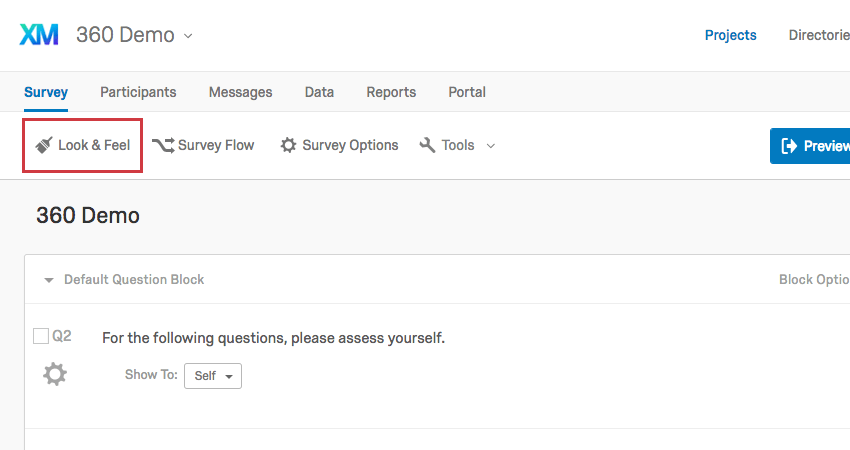 Look & Feel button in the Survey tab