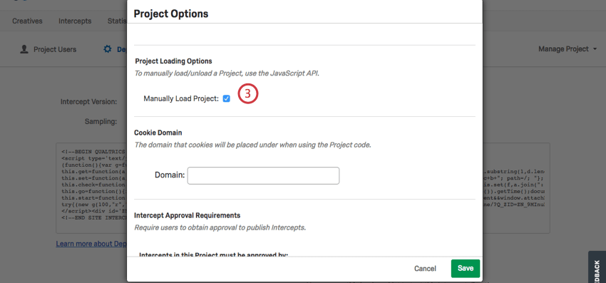 Project Options window is open and Manually Load Project is selected