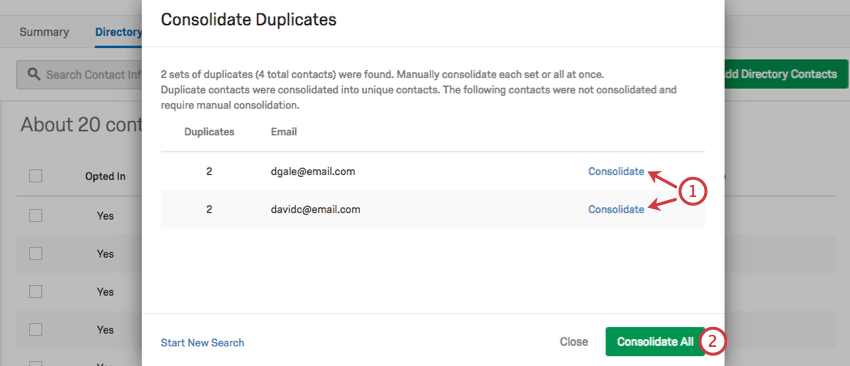 Consolidate Duplicates window is up