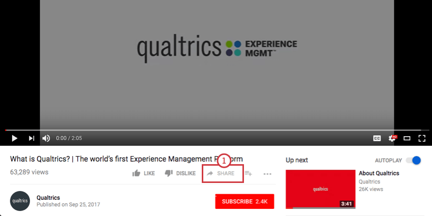 Share button beneath video