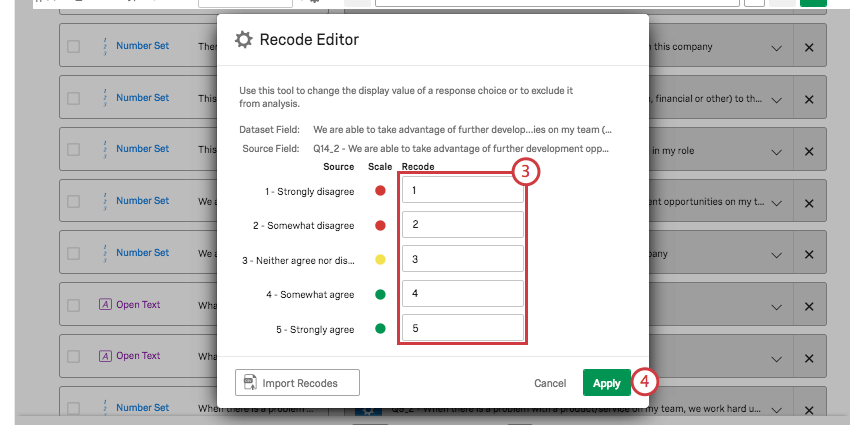 Recode Editor window with fields filled out