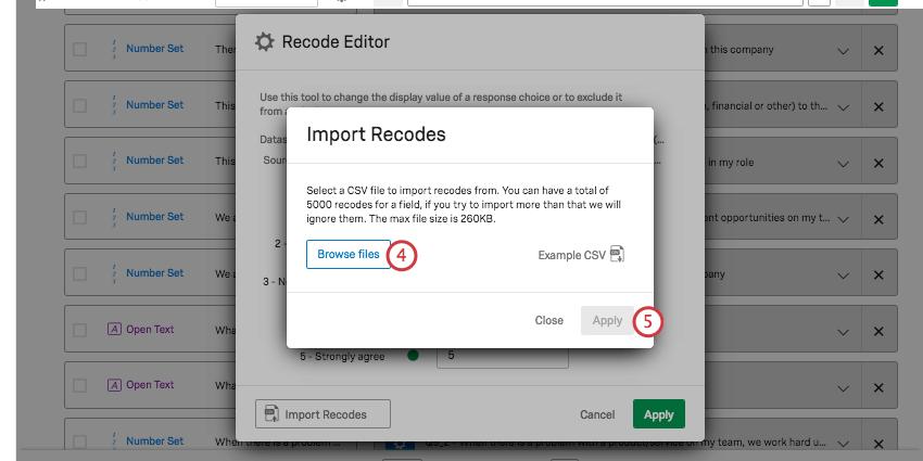 Import recodes window