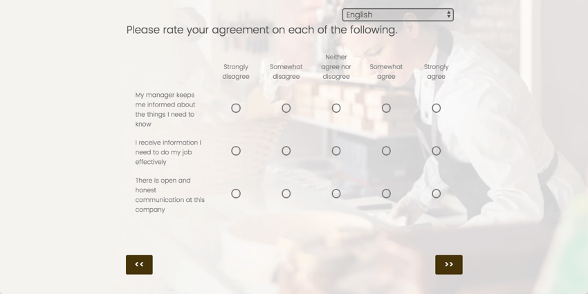 A matrix table asking respondents to rate their agreement. Along the left are statements, and along the top are scale points from strongly disagree to agree, and on each row you have to fill in a bubble for your agreement
