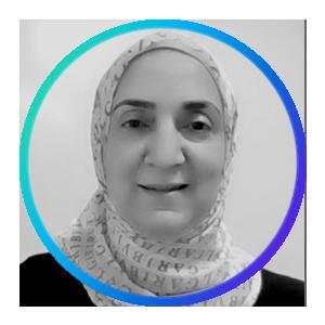 Manar Sabry, Sr. Assistant Director for Strategic Analysis // Binghamton University