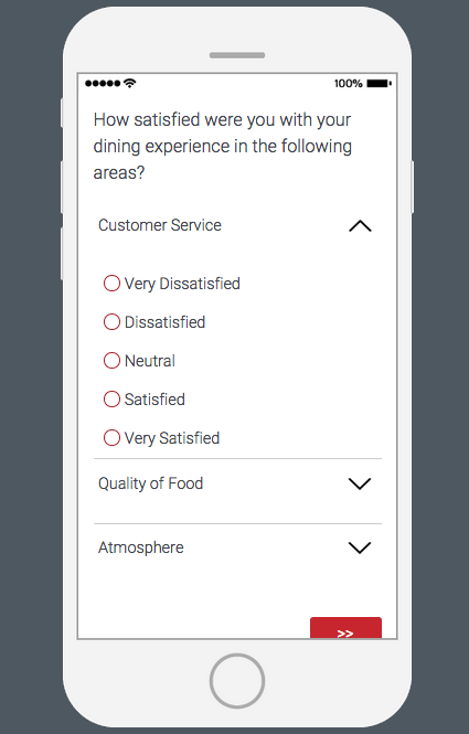Mobile view where each row is an item and it drops down to reveal the scale points that can be assigned
