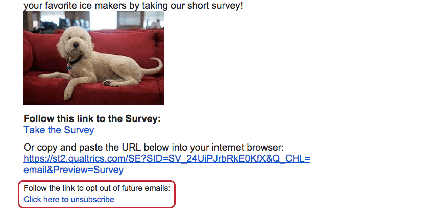 Opt-out survey link found at the bottom of the email message