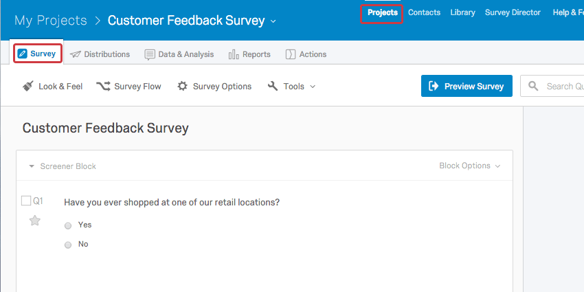Projects Survey