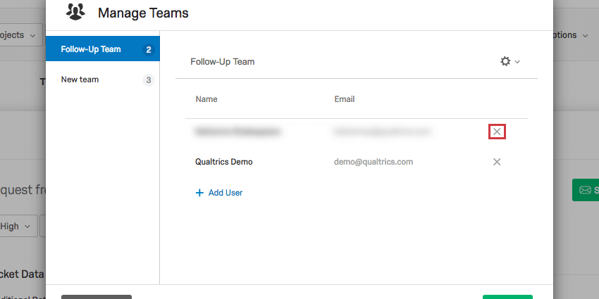 X next to name to delete user from team