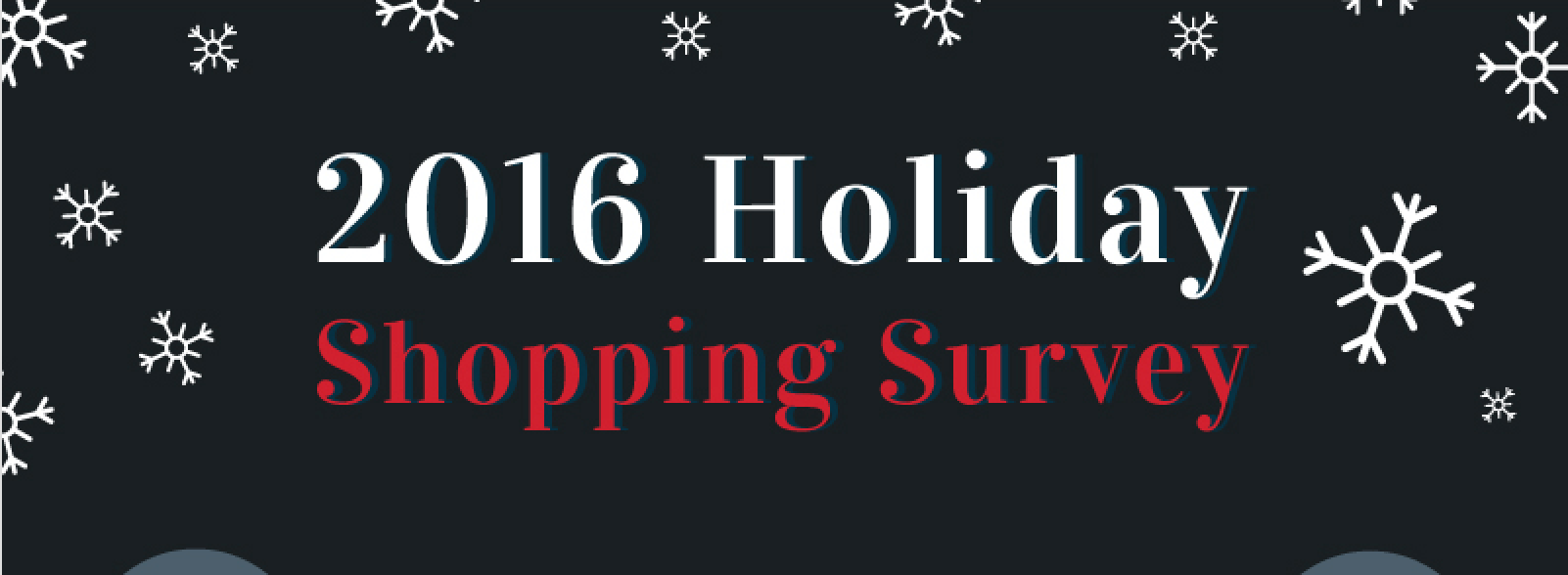 Infographic: 2016 Holiday Shopping Survey